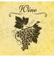 with grapes and leaves on a vector image