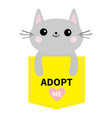 adopt me dont buy cat in yellow pocket pet vector image vector image