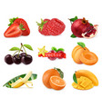 fresh fruits and berries strawberry raspberry vector image vector image