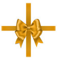 gold bow with ribbon and box isolated on white bac vector image vector image