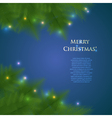 greeting christmas card with spruce branches and vector image vector image