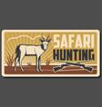 safari hunting banner with african animal and gun vector image vector image