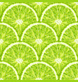 seamless pattern of lime slice realistic citrus vector image vector image