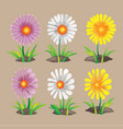 summer spring flower collection set vector image vector image