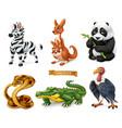 funny animals zebra kangaroo panda bear cobra vector image