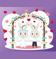 bunnies wedding card vector image