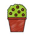 decorative garden pot isolated icon vector image