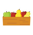 apple and pear harvest isolated vector image vector image