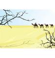 desert karavan vector image vector image