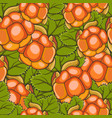 seamless pattern all cloudberry vector image vector image
