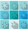 Snowflakes Icons Set Design vector image