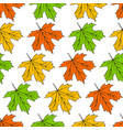 background with maple leaves vector image