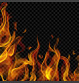fire flame on left and below vector image vector image