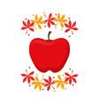 apple fruits design vector image