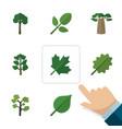 flat icon natural set of oaken linden alder and vector image