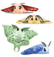 set cute colorful cartoon animated silkworm vector image vector image