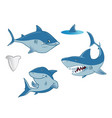 sharks collection vector image vector image