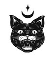 black witch cat evil scary mystical animal vector image vector image