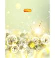 Dandelion Flower Background vector image