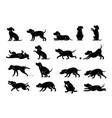 dog behavior silhouette set vector image vector image