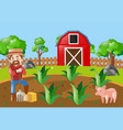 farm scene with farmer and pig vector image vector image