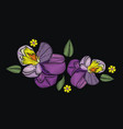 flowers isolated on black background vector image