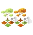 Isometric plants forest collection set Fall trees vector image vector image