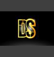 gold black alphabet letter ds d s logo vector image vector image