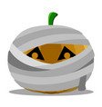 isolated mummy halloween pumpkin vector image