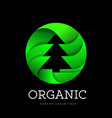 organic tree spruce sign on a white background in vector image vector image