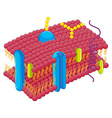 Cell membrane in closer look vector image vector image