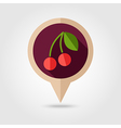 Cherry flat pin map icon Fruit vector image