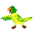 Green yellow parrot cartoon vector image