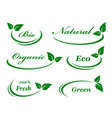 set of background with green leaves vector image vector image