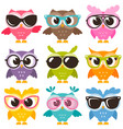 set of colorful funny owls with glasses isolated vector image