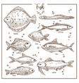 fish seafood underwater animals species isolated vector image