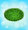 Green grass oval on sky vector image