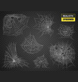 realistic spiderweb transparent set vector image