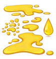 set of orange honey drops and yellow splashes vector image