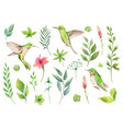watercolor hand painted set with green vector image