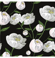 white peony realistic seamless pattern on black vector image vector image
