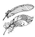 Bird Feather Hand Drawn vector image