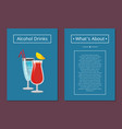 about alcohol drinks banner vector image