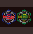 authentic college unlimited typography graphic vector image
