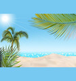 beach with palms and sea background vector image