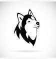 dog siberian husky on white background dog vector image vector image