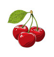 hand drawn sketch of cherry in color isolated on vector image