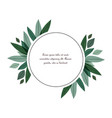 nature decoration leaves vector image vector image