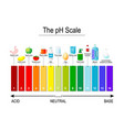 ph scale universal indicator ph test strips vector image vector image