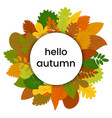 autumn leaves in circle vector image